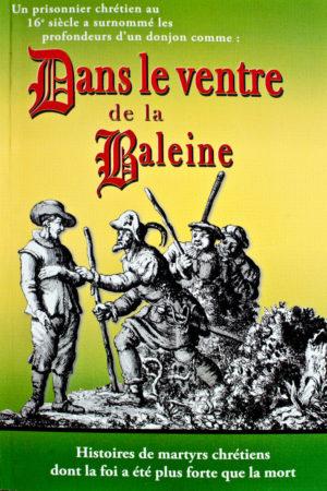dans le ventre haitian literature