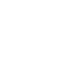 final logo for life literature white